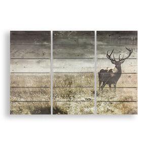 Highland Stag Print On Wood, , large