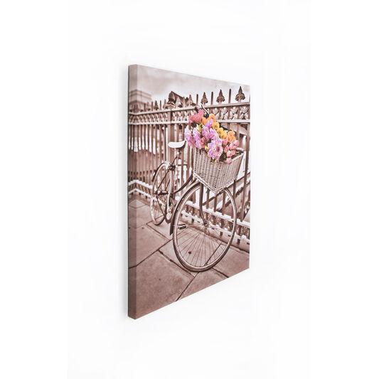 Bicycle Printed Canvas, , large