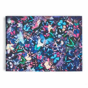 Toiles imprimées Kaléidoscope de papillon, , large
