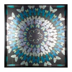 Flock Of Butterflies Framed Art, , large