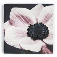 Détail fleur avec Éclat-Toile imprimée, , large