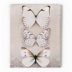 Trio de papillons Toiles imprimées, , large