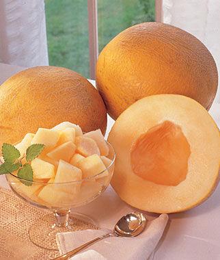 Melon, Creme De La Creme Hybrid 1 Pkt. (30 seeds)