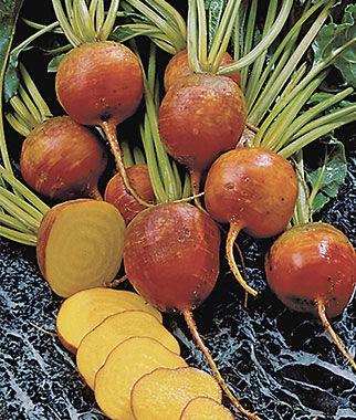 Beet, Burpee's Golden 1 Pkt. (200 seeds), Beet Seeds, Beets, Beet Seed, Seeds, Garden Seeds, Vegetable Seeds, Garden Supplies