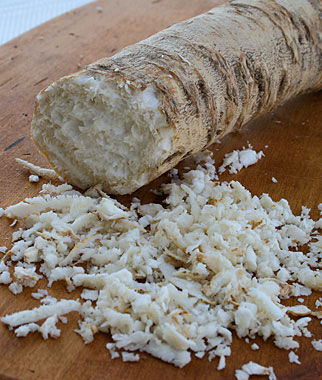 Horseradish, Maliner Kren 1 Pack (5 Roots) Horseradish, Horseradish Roots, Root Veggetables, Garden Seeds, Vegetable Seeds, Garden Supplies