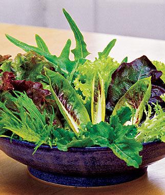 Mesclun, Salad Fresh Cutting Mix 1 Pkt. (500 seeds) Lettuce Seed, Lettuce Seeds, Salad Greens, Lettuce, Lettuce Mix, Mesclun, Garden Seeds, Salad Seeds