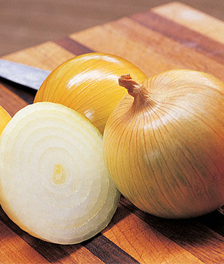 Onion, Candy Hybrid 2 Bunches (150 plants) Onion Seeds, Onion Sets, Onion Plants, Scallion Seeds, Bunching Onions, Green Onions, Garden Seeds