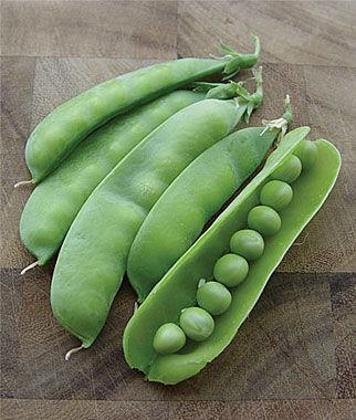 Pea RSVPea 1 Pkt. (200 seeds) Pea Seeds, Peas Seed, Pea Seeds, Peas, Garden Peas, Garden Seeds, Vegetable Seeds, Garden Supplies