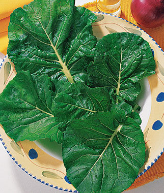 Oriental Greens, Zen Hybrid 1 Pkt. (150 seeds) Asian Greens Seeds, Oriental Vegetables, Chinese, Japanese, Thai, Vietnamese, Cookbooks, Kitchen