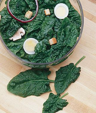 Spinach, Avon Hybrid 1 Pkt. (200 seeds) Spinach Seed, Spinach Seeds, Spinach, Seeds, Garden Seeds, Vegetable Seeds, Garden Supplies