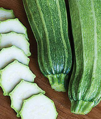 Squash, Summer, Gadzukes! Zucchini Hybrid 1 Pkt. (25 seeds) Zucchini Seeds, Zucchini Seed, Summer Squash, Squash, Zucchini Squash, Garden Seeds, Vegetable Seeds