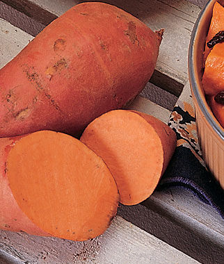Sweet Potato, Georgia Jet 1 Pack (12 bareroots) Sweet Potato Roots, Sweet Potato, Sweet Potatoes, Sweetpotato, Garden Seeds, Vegetable Seeds, Garden