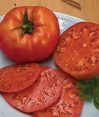 Tomato, Beefsteak Organic 1 Pkt. (30 seeds) Tomatoes, Tomato Seeds, Beefsteak Tomatoes, Slicing Tomatoes, Tomato Starts, Tomato Plants