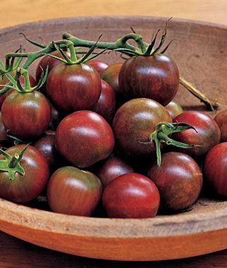 Tomato, Black Pearl Hybrid 1 Pkt. (30 seeds) Cherry Tomato Seeds, Currant Tomato Seeds, Grape Tomato Seeds, Cherry Tomato, Tomato Seeds
