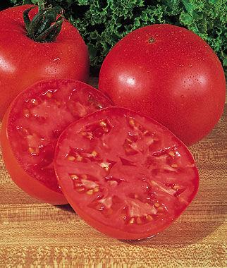 Tomato, Burpee's Big Boy Hybrid 1 Pkt. (50 seeds) Tomatoes, Tomato Seeds, Beefsteak Tomatoes, Slicing Tomatoes, Tomato Starts, Tomato Plants