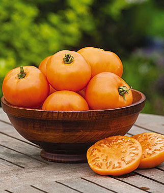Tomato, Orange Wellington 1 Pkt. (65 seeds) Tomatoes, Tomato Seeds, Beefsteak Tomatoes, Slicing Tomatoes, Tomato Starts, Tomato Plants