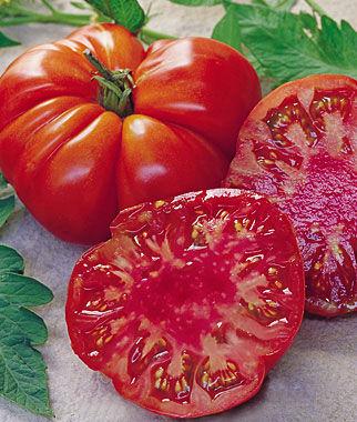 Tomato, Tomande Hybrid 1 Pkt. (30 seeds) Tomatoes, Tomato Seeds, Beefsteak Tomatoes, Slicing Tomatoes, Tomato Starts, Tomato Plants