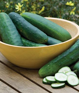Cucumber, Burpee Hybrid II 1 Pkt. (30 seeds)