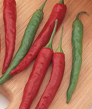 Pepper, Hot, Big Thai Hybrid 1 Pkt. (75 seeds) Hot Pepper Seeds, Chili Pepper Seeds, Chili Seeds, Pepper Seeds, Peppers, Chilis, Garden Seeds, Seed