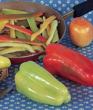 Pepper, Sweet Cubanelle 1 Pkt. (50 seeds) Pepper Seeds, Sweet Pepper Seeds, Stuffing Peppers, Bell Peppers, Sweet Peppers, Bell Pepper Seeds