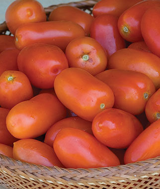 Tomato, Juliet Hybrid 1 Pkt. (30 seeds) Cherry Tomato Seeds, Currant Tomato Seeds, Grape Tomato Seeds, Cherry Tomato, Tomato Seeds