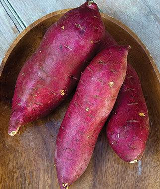Sweet Potato, Murasaki PP19955 1 Pack (12 Bareroots) Sweet Potato Roots, Sweet Potato, Sweet Potatoes, Sweetpotato, Garden Seeds, Vegetable Seeds, Garden