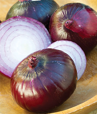 Onion, Red Candy 2 bunches (150 Plants) Onion Seeds, Onion Sets, Onion Plants, Scallion Seeds, Bunching Onions, Green Onions, Garden Seeds