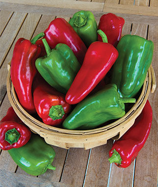 Pepper, Sublime Hybrid 1 Pkt. (25 seeds) Pepper Seeds, Sweet Pepper Seeds, Stuffing Peppers, Bell Peppers, Sweet Peppers, Bell Pepper Seeds