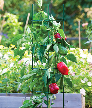 Pro Series Folding Plant Supports plant supports, garden trellis, garden supplies, organic garden supplies, vegetable garden supplies