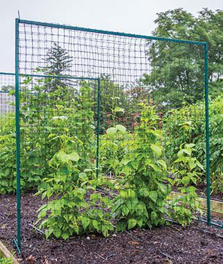 Cucumber and Pea Trellis Kit plant supports, garden trellis, garden supplies, organic garden supplies, vegetable garden supplies