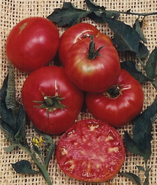 Tomato, Pruden's Purple 1 Pkt.(30 Seeds) Heirloom Tomatoes, Heirloom Tomato Seeds, Heirloom Seeds, Heirloom Tomato Plants, Tomato Seeds