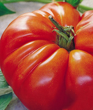 Tomato, Omar's Lebanese 1 Pkt.(30 Seeds) Heirloom Tomatoes, Heirloom Tomato Seeds, Heirloom Seeds, Heirloom Tomato Plants, Tomato Seeds