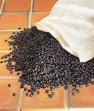 Bean, Cherokee Trail of Tears 1 Pkt. (1 oz.) Bean Seeds, Pole Beans, Bean - Pole, Vegetable Seeds, Garden Seeds, Seeds, Garden Supplies