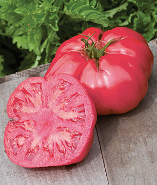 Tomato, Caspian Pink 1 Pkt.(30 Seeds) Heirloom Tomatoes, Heirloom Tomato Seeds, Heirloom Seeds, Heirloom Tomato Plants, Tomato Seeds