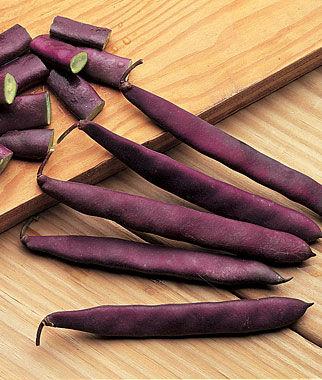 Bean, Red Swan 1 Pkt. (.5 oz.) Bean Seeds, Bush Beans, Beans - Bush, Bush Bean Seeds, Vegetable Seeds, Garden Seeds, Vegetable Seed