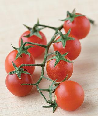 Tomato, Red Currant 1 Pkt.(60 Seeds) Cherry Tomato Seeds, Currant Tomato Seeds, Grape Tomato Seeds, Cherry Tomato, Tomato Seeds