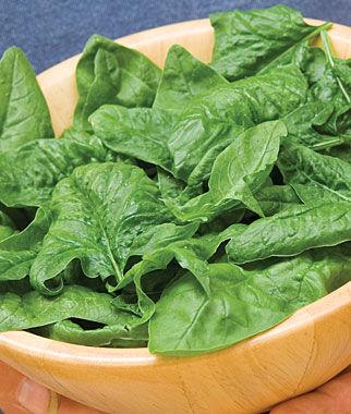 Spinach, Bloomsdale Organic 1 Pkt. (400 seeds) Spinach Seed, Spinach Seeds, Spinach, Seeds, Garden Seeds, Vegetable Seeds, Garden Supplies