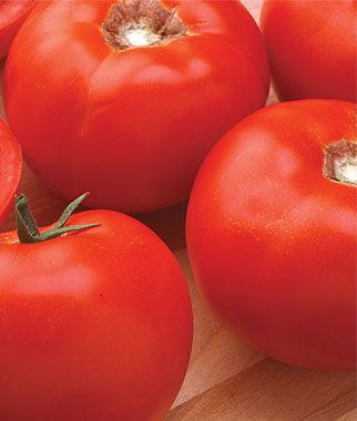 Tomato, Burpee's Hybrid Organic 1 Pkt. (30 Seeds) Tomatoes, Tomato Seeds, Beefsteak Tomatoes, Slicing Tomatoes, Tomato Starts, Tomato Plants
