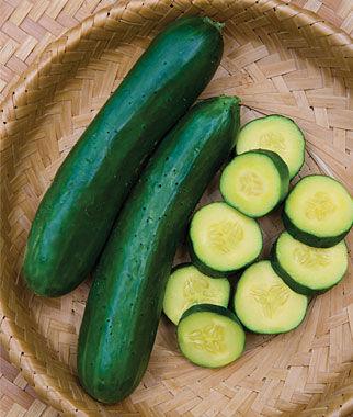 Cucumber, Gold Standard Hybrid 1 Pkt. (20 Seeds)