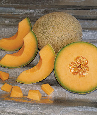 Melon, Cantaloupe, Armenian Sunrise Hybrid 1 Pkt. (30 Seeds)