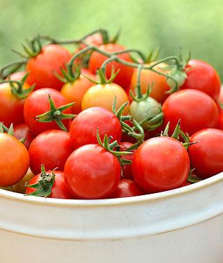 Tomato, Power Pops Hybrid 1 Pkt. (20 Seeds) Cherry Tomato Seeds, Currant Tomato Seeds, Grape Tomato Seeds, Cherry Tomato, Tomato Seeds