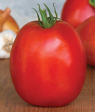 Tomato, SuperSauce Hybrid 1 Pkt. (25 seeds) Tomatoes, Tomato Seeds, Beefsteak Tomatoes, Slicing Tomatoes, Tomato Starts, Tomato Plants