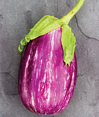 Eggplant, Shooting Stars 1 Pkt. (30 seeds) Eggplant Seeds, Eggplant Seed, Eggplant Plants, Eggplant Starts, Eggplant, Garden Seeds, Garden
