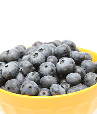 Blueberry, Toro 1 Plant Blueberry Plants, Blueberries, Berry Plants, Fruit Plants, Fruit Garden, Berry Garden, Garden Plants