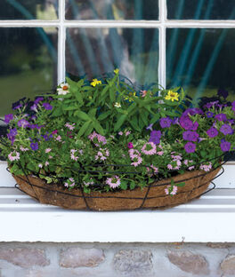 Camelot AquaSav™ Window Deck Planter , , large