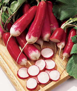 Radish, French Dressing, , large