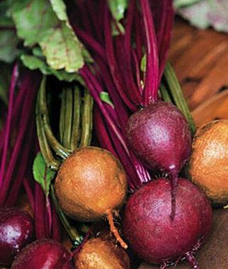 Cooks Custom Blend Beet Seeds - 1 Pkt. (300 seeds), Beet Seeds, Beets, Beet Seed, Seeds, Garden Seeds, Vegetable Seeds, Garden Supplies