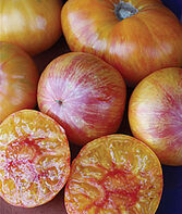 Tomato, Patty's Yellow Striped Beefsteak , , large