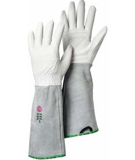 Rose Garden Gloves, , large