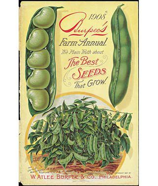 Burpee Heritage Seed Collection, , large